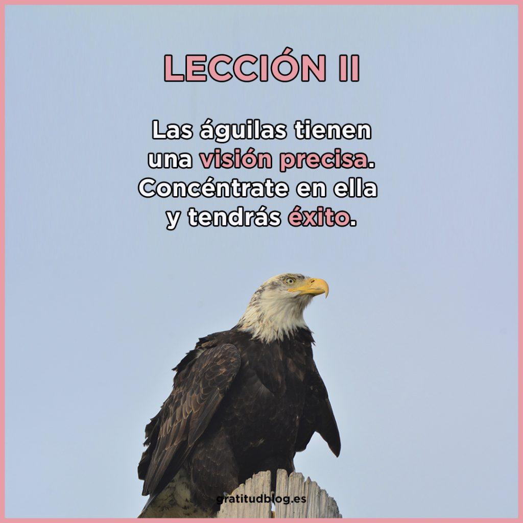 2º Consejo del Águila - Las águilas tienen una visión precisa.