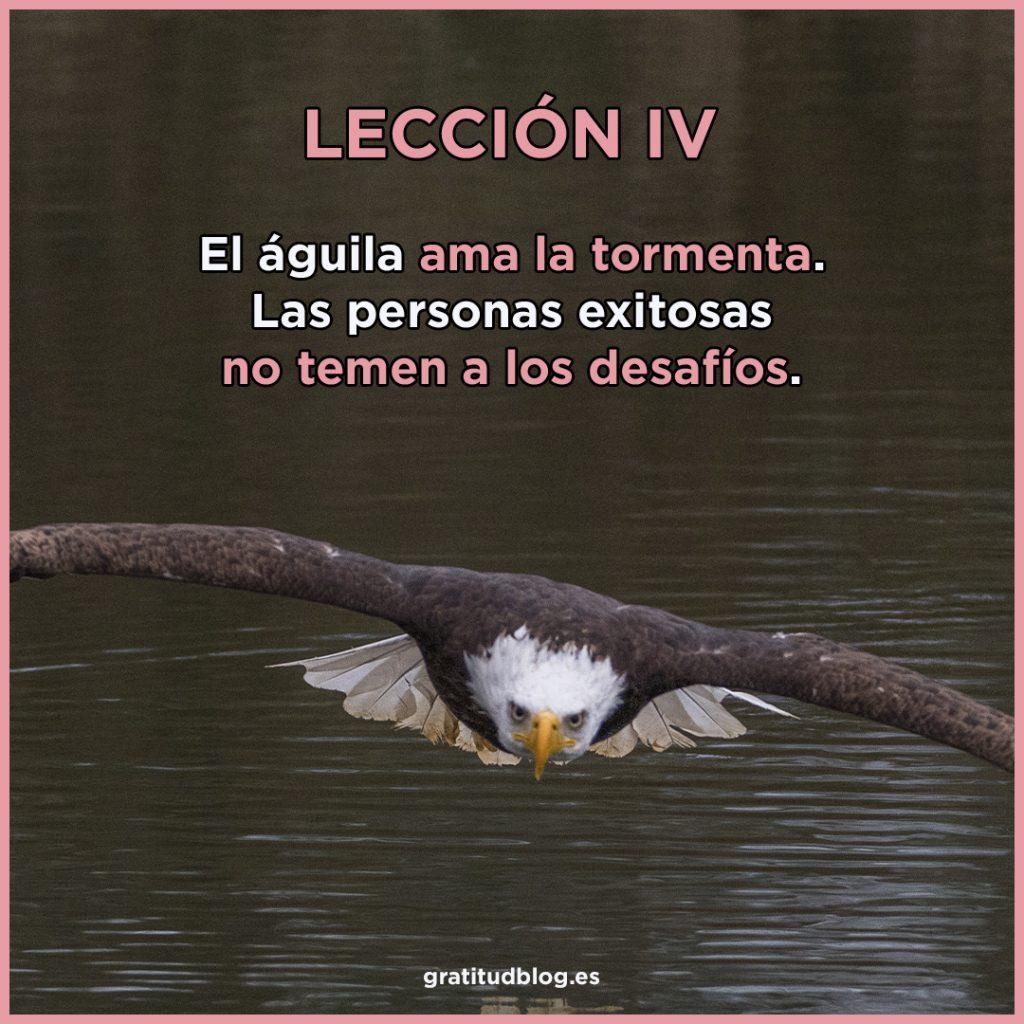 4º Consejo del águila - El águila ama la tormenta.